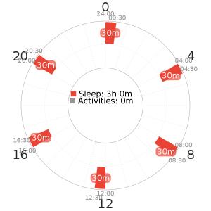 Dymaxion 6 schedule variant