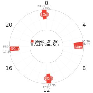 Dymaxion Schedule
